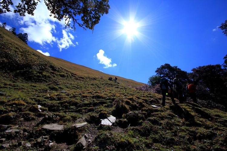 Ascending to Ali Bugyal