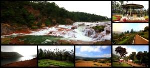 Ooty Collage