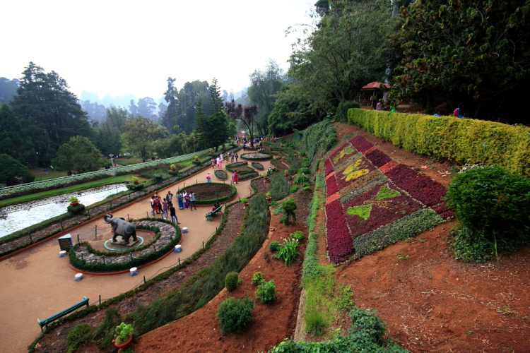 View from the top of Ooty Botanical Garden