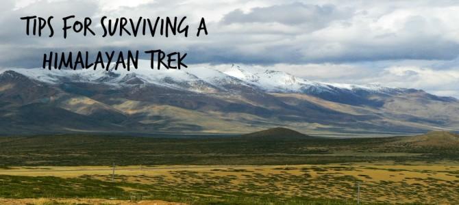 Tips For Surviving A Himalayan Trek