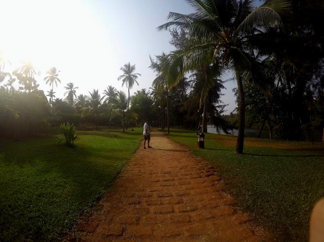 Taj Bekal Property