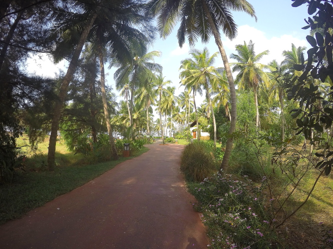 Vivanta By Taj Bekal Property
