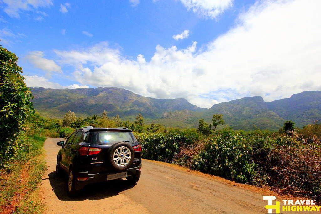 Drive to Masinagudi