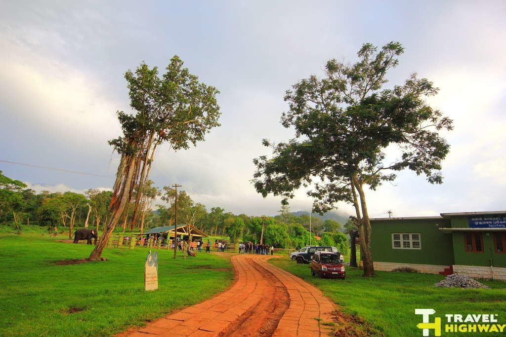 Elephant Camp Masinagudi
