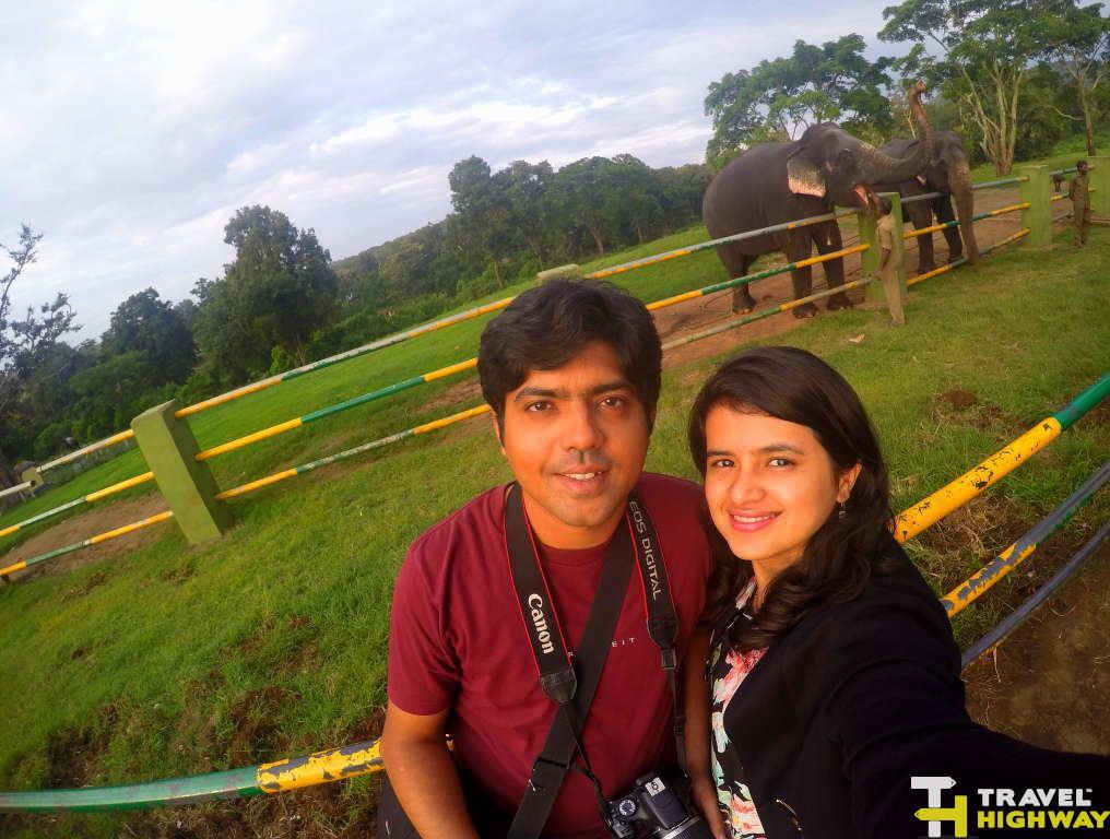 Masinagudi elephant camp