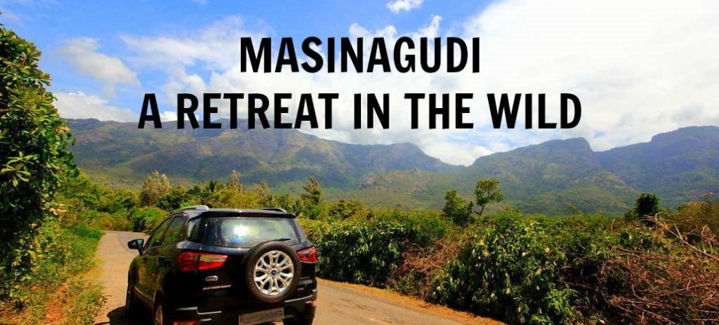 Masinagudi: A Retreat In The Wild