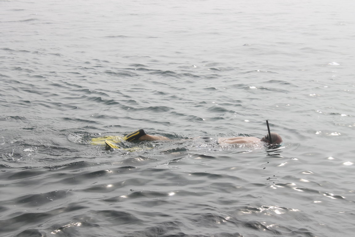 Old Guy Snorkeling