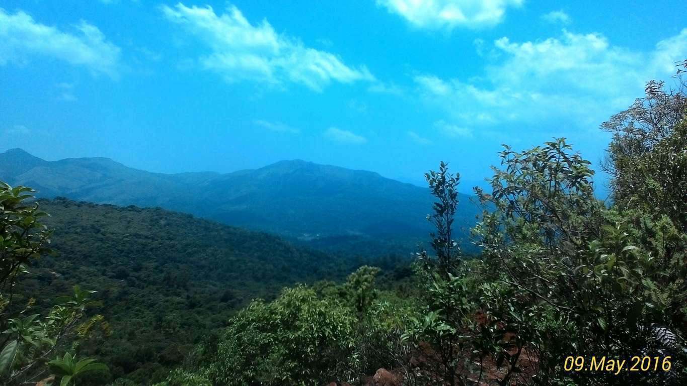 View from the Tadiandamol Peak, Coorg