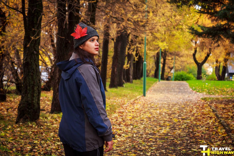 Akureyri Botanical Garden   Fall Season